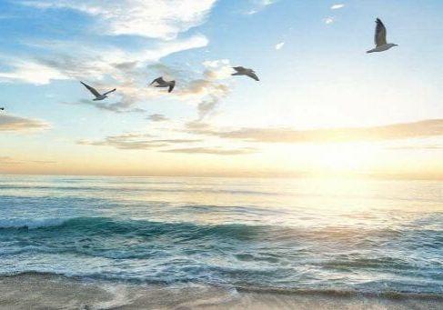beach-1852945_1920